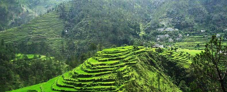 Almora Weekend Tour Package