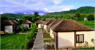Corbett Machaan Resort at Village Teda near Corbett National Park