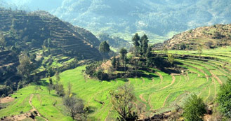 Pithoragarh just 6hrs and 30 min drive from Delhi