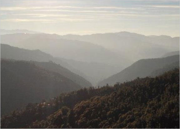 Shoghi tour in November