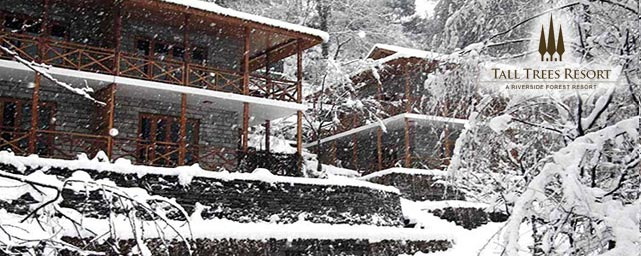 Tall Tree Resort Manali view during snow fall
