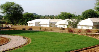 The Fort View Camp near Sariska National Park