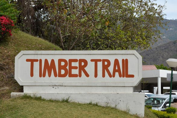 Timber Trail Height Parwanoo Tour Package