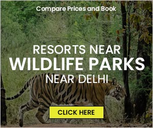 Resorts near Wildlife National Parks located near Delhi